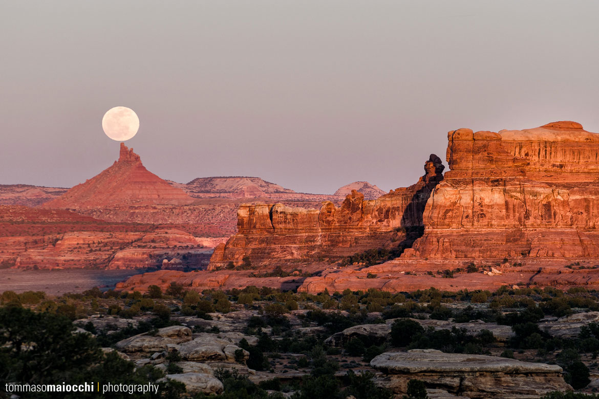 Arches National Park – The Needles